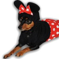 Mickey and Minnie Mouse Dog Costume | Halloween ...