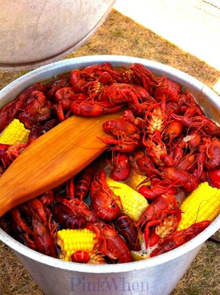 Recipe for New Orleans Crawfish Boil - I promise you'll enjoy this cajun delicacy.: