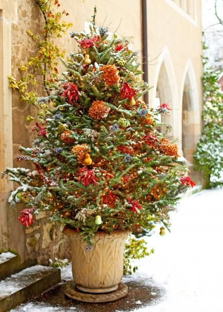 14 Cheerful Winter Container Gardens