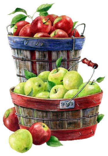 apples and baskets