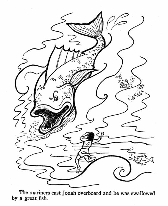 Fish, Jonah and the whale and Colouring pages on Pinterest