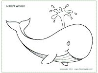 Whales, Colouring pages and Tool box on Pinterest