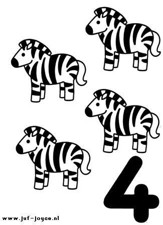 Dieren and Zebras on Pinterest