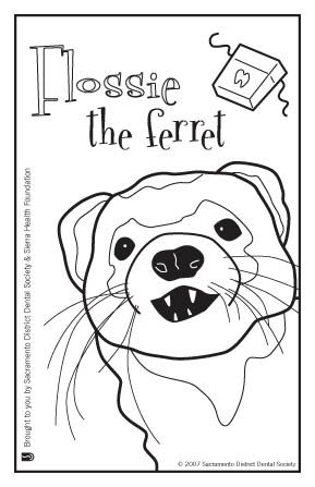 Ferrets, Coloring and Book on Pinterest
