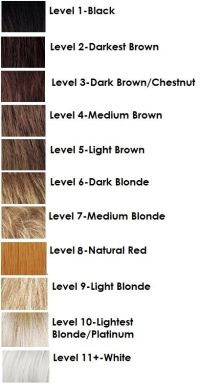 Gudu Ngiseng Blog Hair Color Levels 110 Chart Of Hair ...