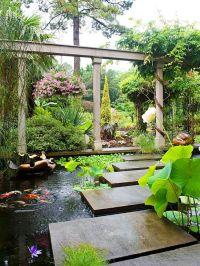 Ponds, Koi ponds and Koi on Pinterest