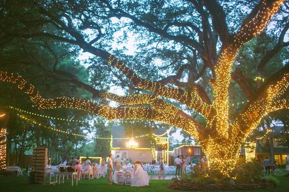 Kaitlin Leigh outdoor wedding light up tree oak tree manor