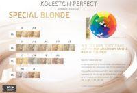 Wella Professionals Koleston Perfect Presents The Color ...