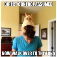 Image result for mind control meme