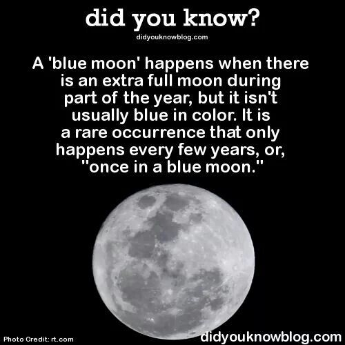 blue moon fact fun facts pinterest moon and