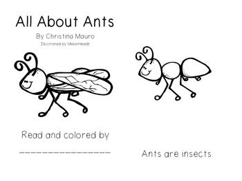 Ants, Kindergarten and Ant colony on Pinterest