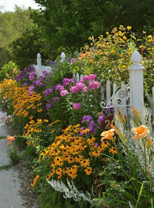 Good mix for my cottage garden.I love the daylilies along the white picket fence!!!: