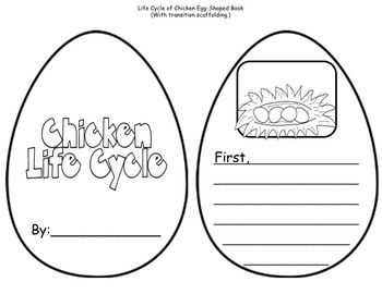 Literacy activities, Life cycles and Literacy on Pinterest