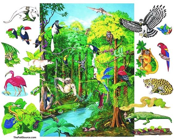 rainforest background Google Search to paint