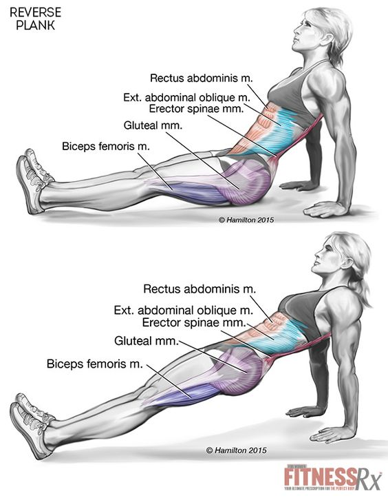Tighten Your Core and Lower Body With Reverse Planks: