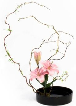 Ikebana flower arranging art: