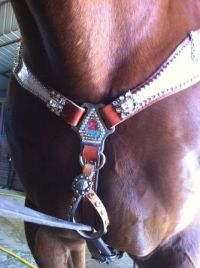 tie down keeper with bling | Horse Tack & Supplies ...