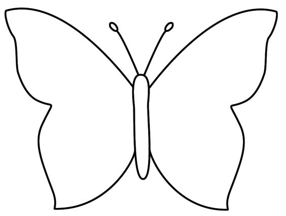 Blank Butterfly Coloring Pages Sketch Coloring Page