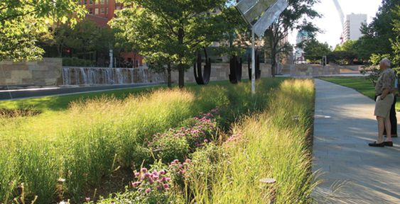 six rain gardens covers over 5 000