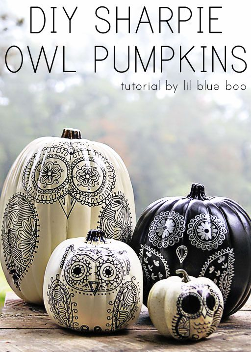 DIY Sharpie Owl Pumpkins Tutorial by lil blue boo: