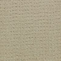 Coronet Honorable Decent Cut and Loop Indoor Carpet from ...