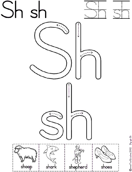 Sh Digraph Worksheet and Mini-Book available in two font