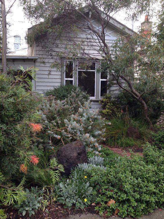 australian native garden northcote victoria
