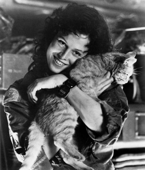 """Ripley and Jones~My all time top movie, all time fave """"strong female lead"""", top director...:"""