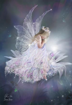 White Daisy Fairy E1  Fairies  Pinterest  Daisies and