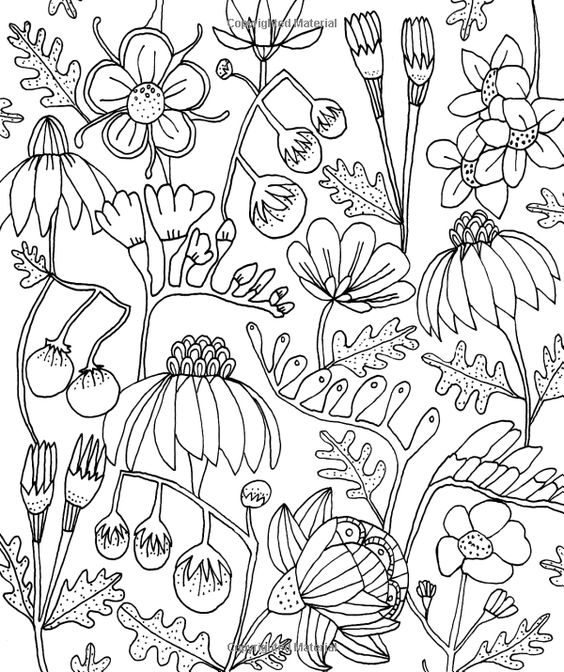 Free Coloring Pages Of Botanicals