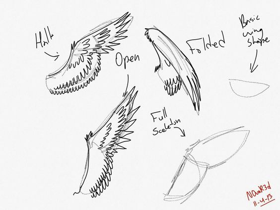 Wings drawing, Wings and Drawings on Pinterest