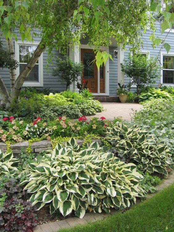hostas front yard landscaping