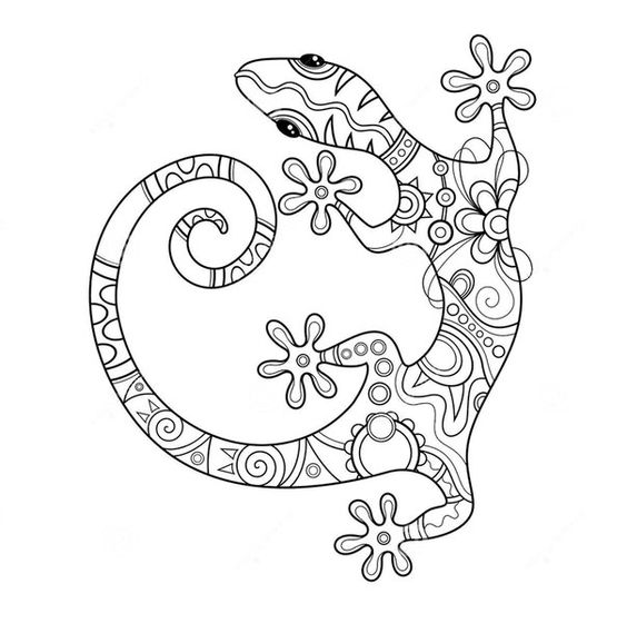 Pin by ∞ RoSaLiE ∞ on Adult Colouring~Dragons~Lizards