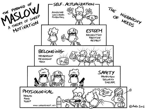 Leadersheep, anto, sheep, leadership, management