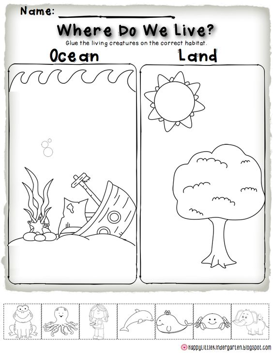 Ocean Habitat FREEBIE! Perfect for science centers and