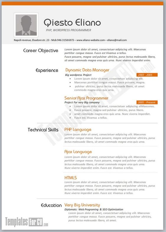 Simple Resume Resume And Simple On Pinterest