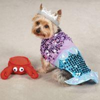 Little Mermaid Ariel Dog Costume with plush Sebastian Toy ...