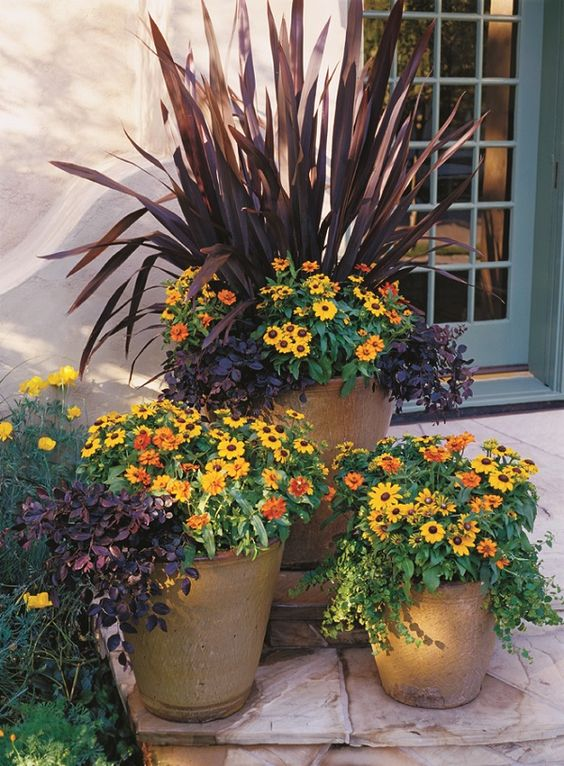 Stunning Container Gardening Ideas: