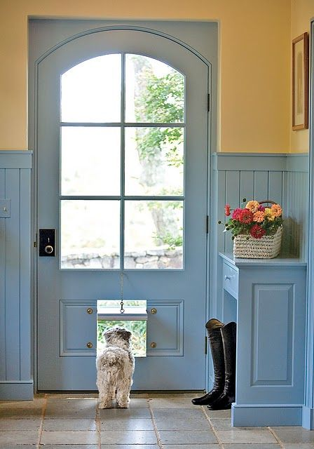 How to Spoil Your Dog Doggy Hotel Luxury Dog Door Yellow and Blue Mudroom