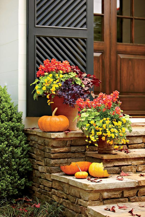 Fall Container Gardening Ideas: Vibrant Fall Colors:
