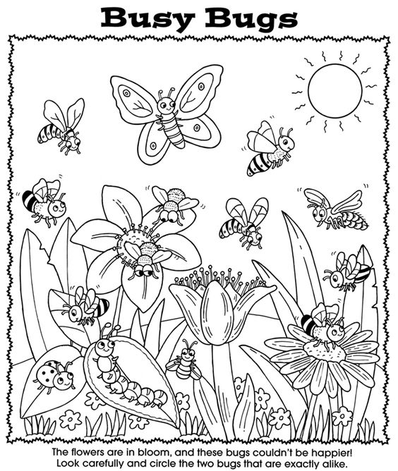 Coloring, Circles and Coloring books on Pinterest