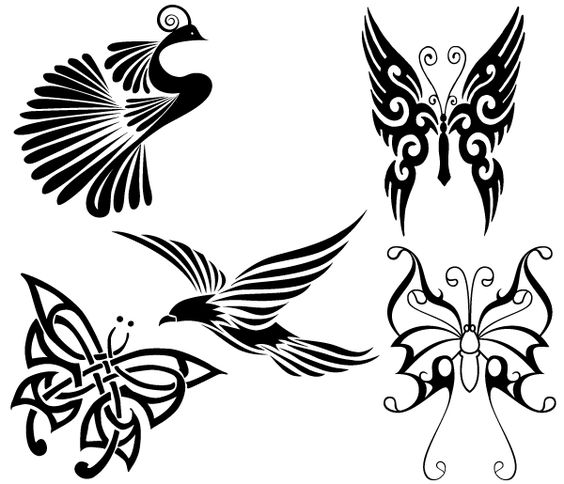 Free Tribal Birds and Butterflies Vector Free Vector