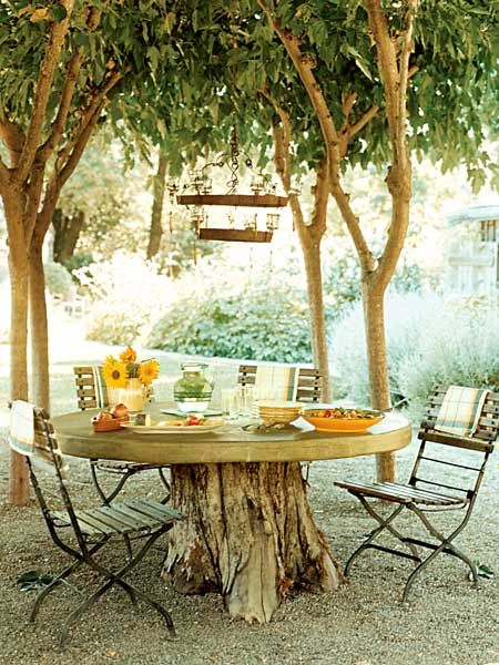 lunch, alfresco, concrete table, mulberry trees: