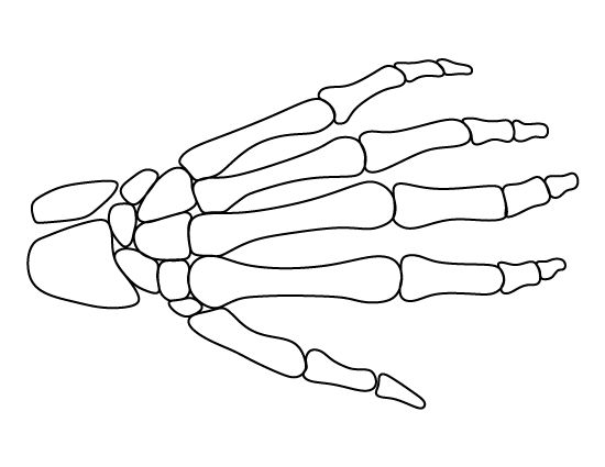 Skeleton hand pattern. Use the printable outline for
