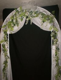 wedding arch with wisteria and curly vines.