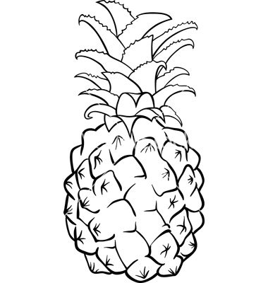 Pineapple art, Pineapple fruit and Line drawings on Pinterest