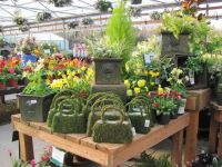 Garden center displays, Display ideas and Display on Pinterest