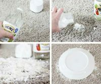 A Simple, Effective Remedy For Pet Stains On Carpets ...