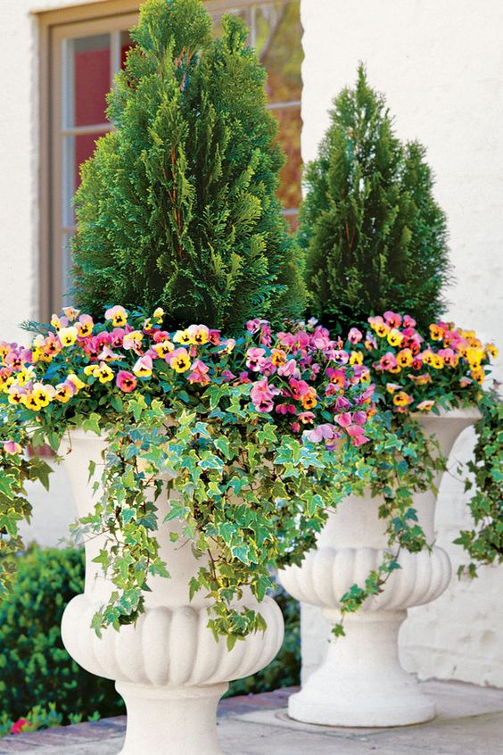 Evergreens and Annuals 122 Container Gardening Ideas