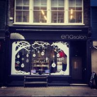 ENA HAIR SALON- holiday window could also be done on ...